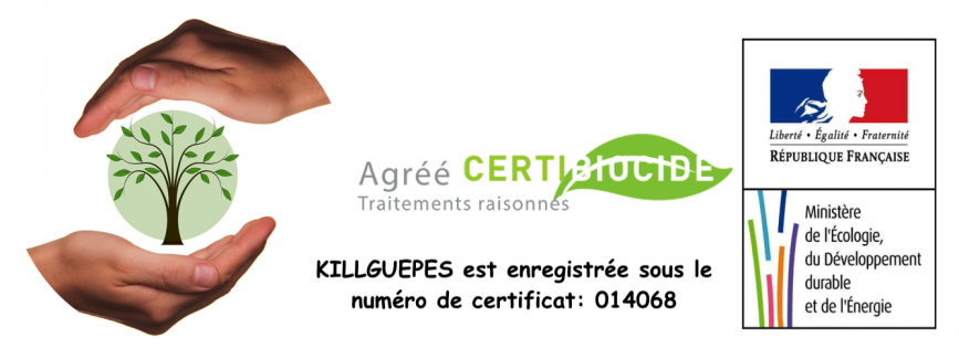 Logo certibiocidefin