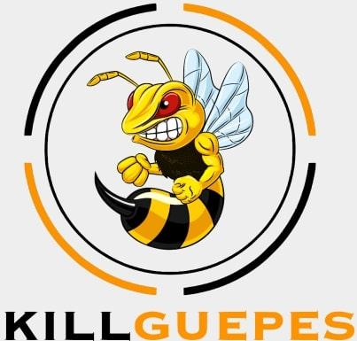 Killguepes logo gironde bordeaux